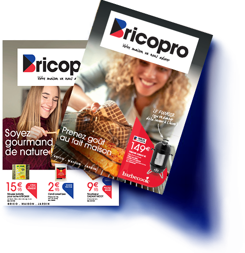 Catalogues Bricopro